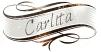 Changement nom blog Les Déboires de Carlita